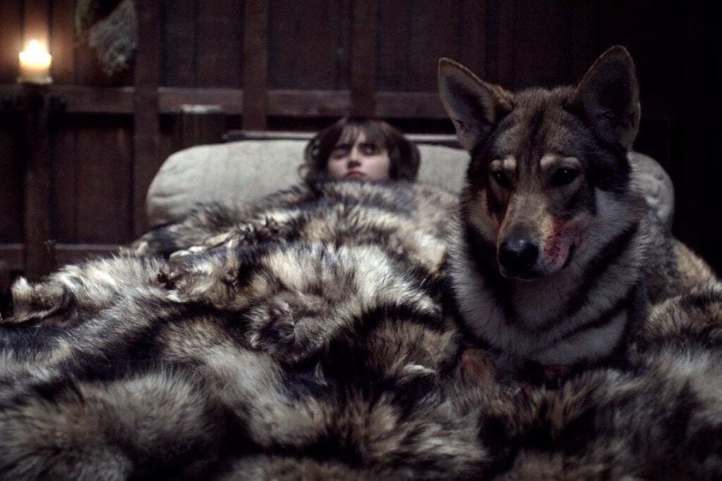 summer game of thrones bran stark