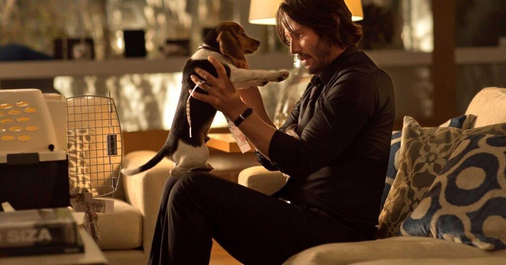John Wick Keanu Reeves Daisy Dog