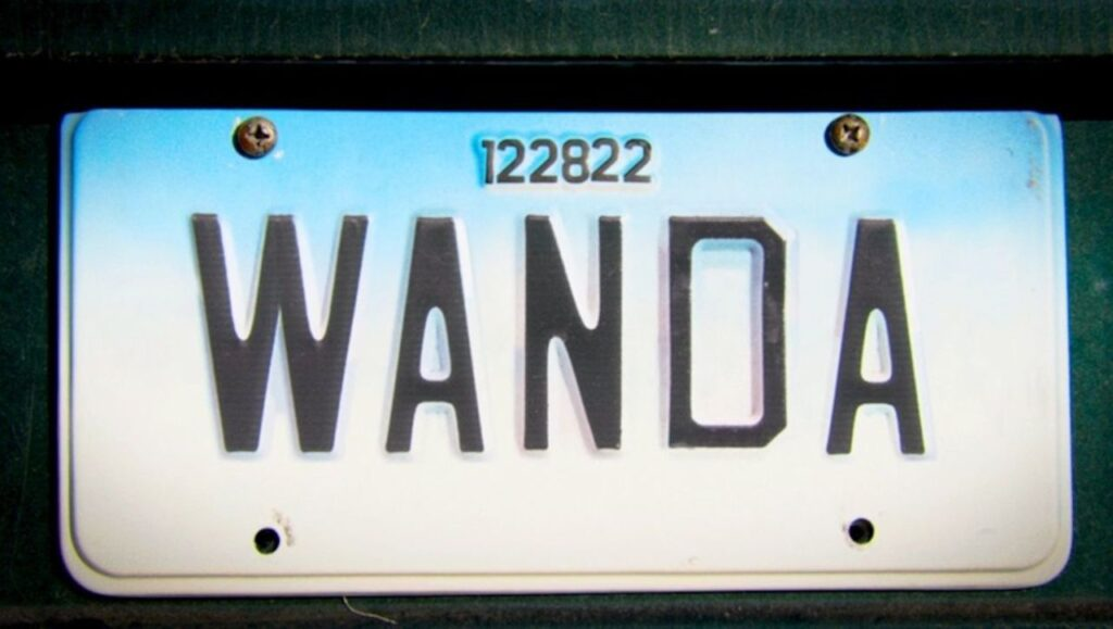 Stan Lee WandaVision
